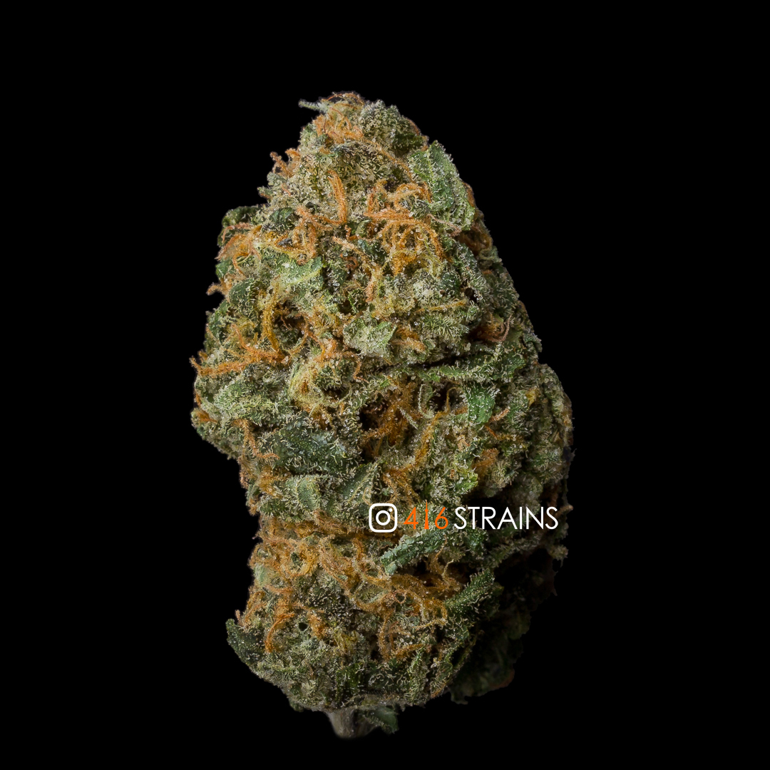 Collaborative Community Review Blue Gelato Hybrid By Thc Recipes 416strains Ca