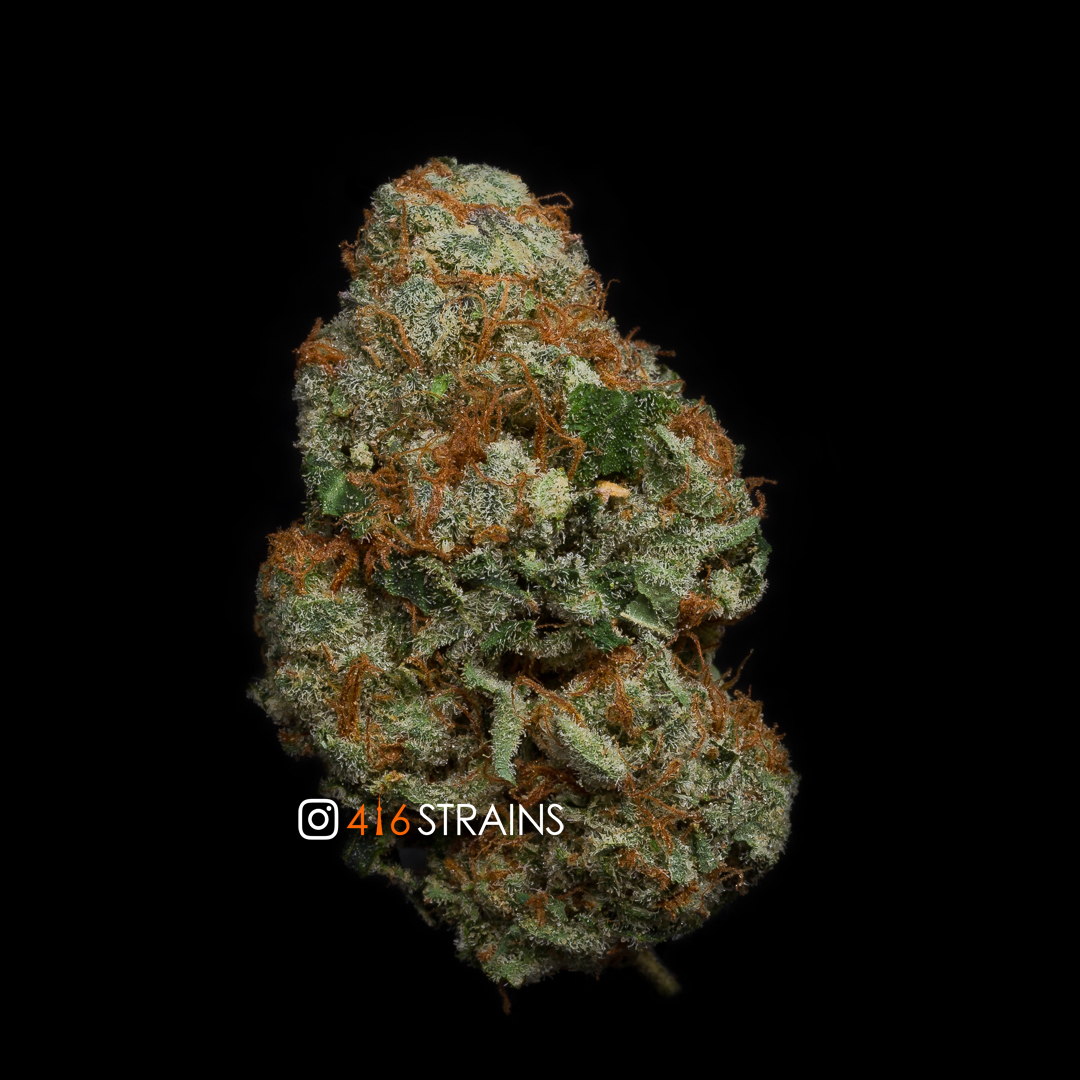 Mimosa (Sativa) - Hillside Pharms - 416Strains ca